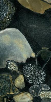 Graniti Marinace Nero